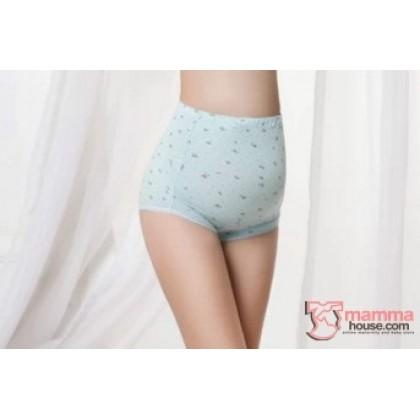 Maternity Panties - Bear Blue